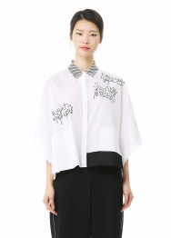 Ace blouse