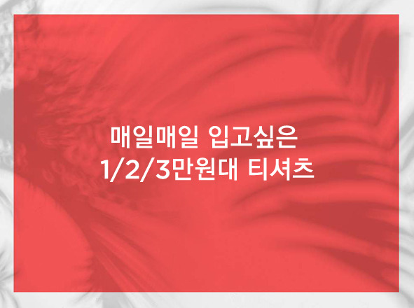 AMERICAN EAGLE OUTFITTERS<br>매일매일 입고싶은 1/2/3만원대 티셔츠