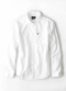 AEO Slim Solid Oxford Button Down Shirt